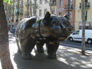 raval-cat